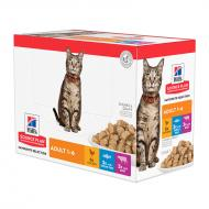 Hill's Science Plan Cat Adult Favourite Selection våtfôr 12 x 85g