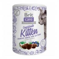 Brit Care Snack Superfrukt til Kattunge