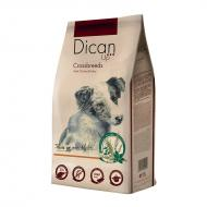 Dican Up Dog Adult Cross Breeds for Blandingsraser