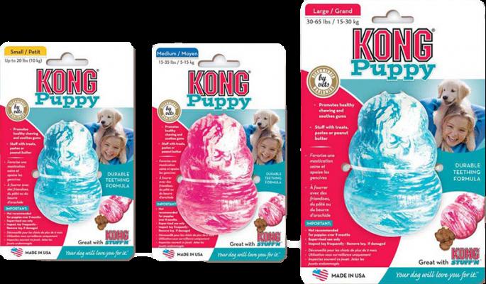 Kong Puppy Aktivitetsleke