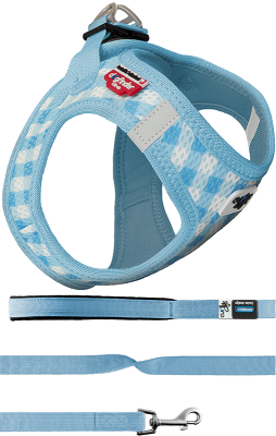 Curli Puppy Set Hundesele Y-sele Blue Routes