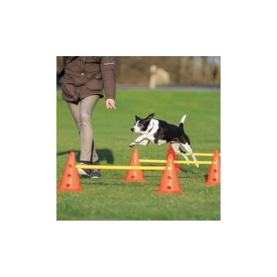 Trixie Agility Hindersett - 3 hinder