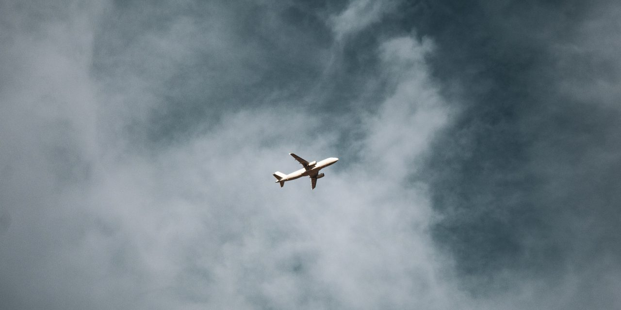 Regler og tips for hund og katt på fly