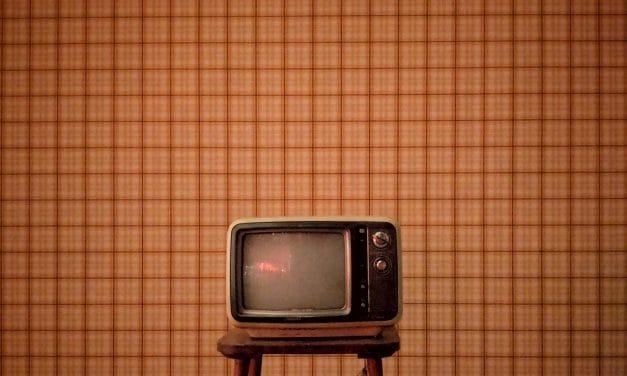 Kan hunden min se på TV?