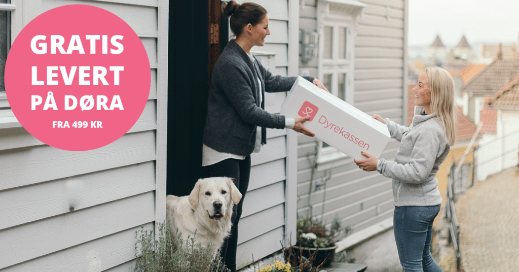 Når du handler hundefôr på nett hos Dyrekassen.no, kan du få pakken levert på døren.