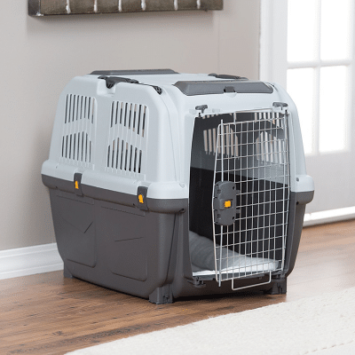 Katteutstyr kan være hundeutstyr - de bruker samme bur som små hunder