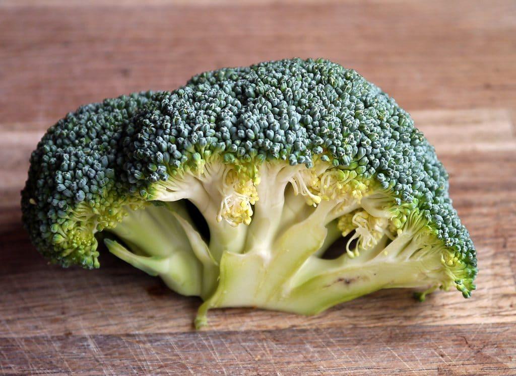 Katter kan spise brokkoli og det er veldig sunt for dem
