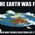 Hvorfor velter katter ting?