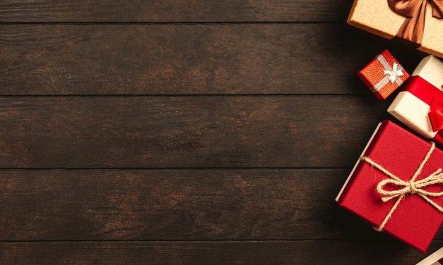 Julegavetips til hund – våre ekspertråd