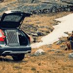 Hvordan finne riktig størrelse hundebur til bil