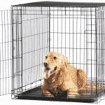 Sammenleggbart hundebur | Slik brukes det
